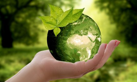 How to Make Your Company More Environmentally Friendly in 2020